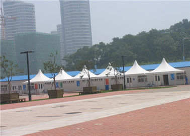 Outdoor Promotional Pagoda Party Tent High Security Ground Anchor Fixing